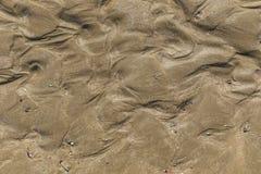 使与壳的沙子靠岸,并且踪影关心波浪 免版税库存照片