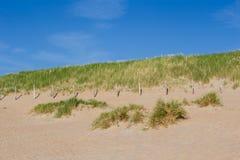 使与沙丘的海岸靠岸在与蓝天的一个晴天 免版税库存图片