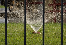 使与水管和扩散喷水隆头的灌溉系统环境美化 图库摄影