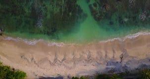 使低早晨普吉岛rawai泰国浪潮顶部热带视图靠岸 股票视频