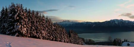 使全景瑞士冬天环境美化 库存照片