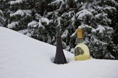 使变冷的酒 免版税库存图片