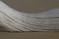 使含沙的漂流木头靠岸 免版税库存照片