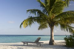 使含沙的马尔代夫靠岸 库存照片