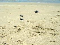 使含沙石头靠岸 免版税库存照片
