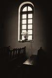 使命埃斯帕与花的圣所窗口 免版税库存照片