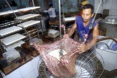 使国内产业的豆腐独奏 免版税库存照片