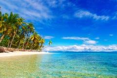使在掌上型计算机沙子场面夏天树型视图白色的美好的梦想本质靠岸 在白色沙子上的美丽的棕榈树靠岸, Th 免版税库存照片