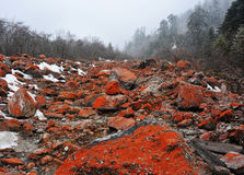 使垄沟ganzi专区红色岩石燕子靠岸 免版税库存图片