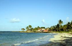 使大玉米末端旅馆海岛尼加拉瓜北部靠岸 免版税库存图片