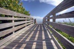 使放松s的佛罗里达靠岸 免版税库存图片