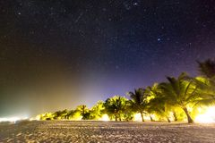 使晚上场面靠岸 星和银河与棕榈树和沙滩 库存照片