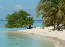 使晴朗加勒比日的夏天靠岸 免版税图库摄影