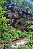 使有大岩石的山河环境美化在岸 免版税库存图片