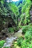 使有大岩石的山河环境美化在岸 免版税库存照片