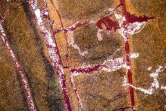 使有大理石花纹在温暖不同的颜色,设置与三十三张照片 库存图片