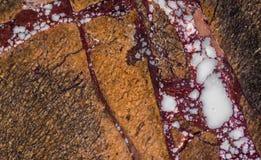 使有大理石花纹在温暖不同的颜色,设置与三十三张照片 图库摄影