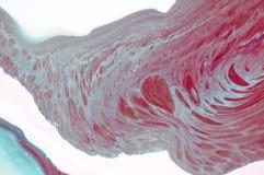 使有大理石花纹 背景可能使使用的纹理有大理石花纹 绘飞溅 五颜六色的流体 抽象背景上色了 光栅例证 五颜六色的抽象painti 库存照片