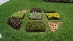 使标志环境美化由植被和石头/岩石做成 库存图片