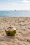 使椰子靠岸 免版税库存图片