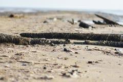 使死水泥、泥背景和背景靠岸 库存图片
