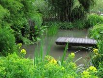 使池塘环境美化的庭院 免版税库存图片