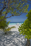 使海岛热带的马尔代夫靠岸 库存照片
