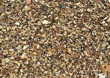 使湿的小卵石靠岸 免版税库存图片