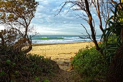 使澳大利亚自然靠岸的足迹 免版税库存图片