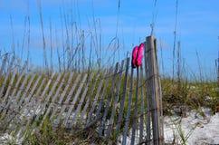 使烘干在篱芭的游泳鞋子靠岸在佛罗里达海滩 免版税库存图片