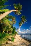 使热带的天堂靠岸 库存照片