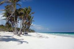 使热带的天堂靠岸 库存图片