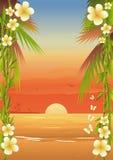 使热带的海岛靠岸 库存照片