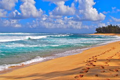 使热带的海浪靠岸 库存照片