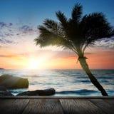 使热带美好的日落靠岸 免版税库存照片