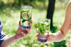 使玻璃叮当响的女性手用柠檬和绿色薄荷叶填装了水 野餐在庭院里 库存图片