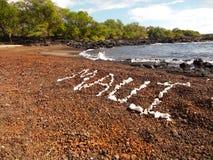 使珊瑚靠岸 免版税库存图片