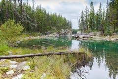 使班夫国家公园西部加拿大不列颠哥伦比亚省环境美化 免版税库存图片