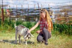使用与一只小的山羊的女孩在村庄 图库摄影