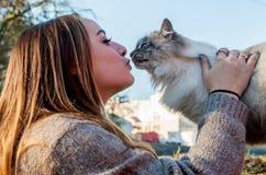 使用与一只被抢救的离群猫的美丽的女孩 库存照片