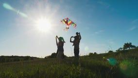 使用与一只风筝的幸福家庭在一个草甸在一好日子 股票录像