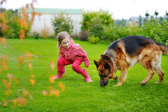 使用与一条大狗的愉快的小女孩 免版税库存图片