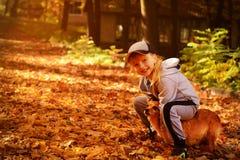 使用与一条狗的一个小俏丽的女孩在秋天公园 免版税库存图片
