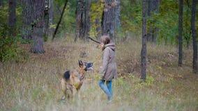 使用与一条狗的女孩在森林 库存照片