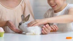 使用与一点蓬松兔宝宝的母亲和女儿抚摸他,爱和关心 股票录像