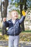 使用与一片叶子的逗人喜爱的一个岁女婴在公园 免版税图库摄影