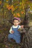 使用与叶子的小男孩在秋天公园 免版税库存照片