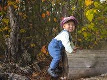 使用与叶子的小男孩在秋天公园 免版税库存图片
