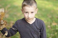 使用与叶子的年轻男孩在秋天 免版税库存照片