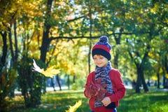 使用与叶子的愉快的婴孩本质上 晴朗秋天的日 男孩 库存图片